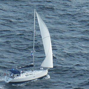 Aleine unter 250 anderen Booten