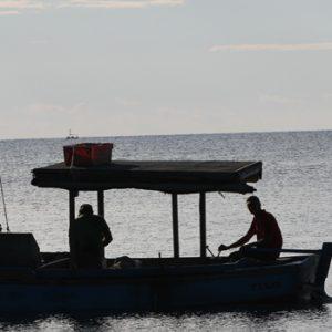 Fischer auf Fang